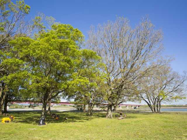 宮川ラブリバー公園