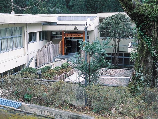 大杉谷自然学校