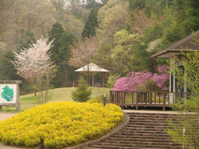 三重県上野森林公園