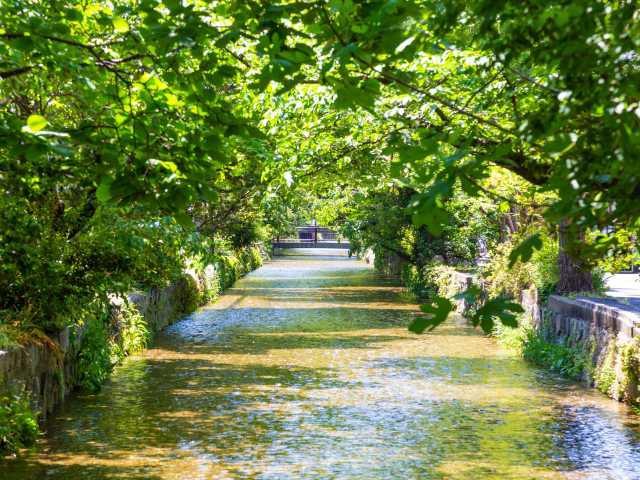 高瀬川~五条楽園後