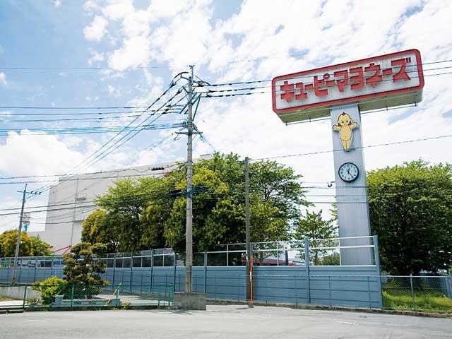 キユーピー鳥栖工場(見学)