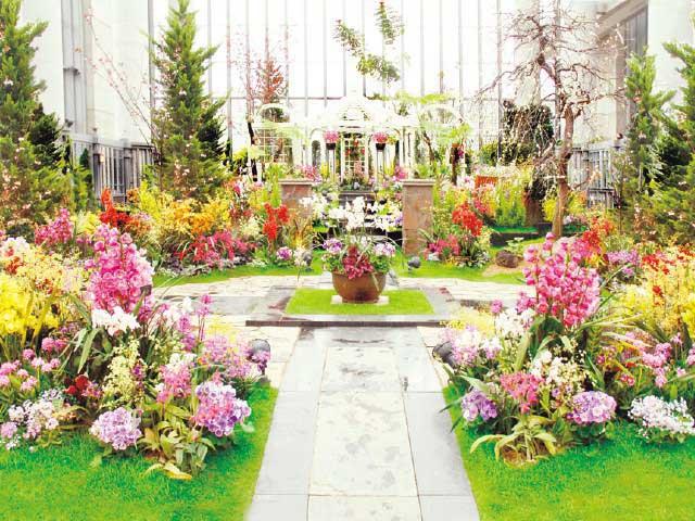 兵庫県立淡路夢舞台温室 「奇跡の星の植物館」