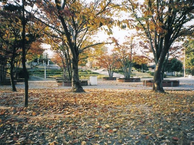 県立西猪名公園