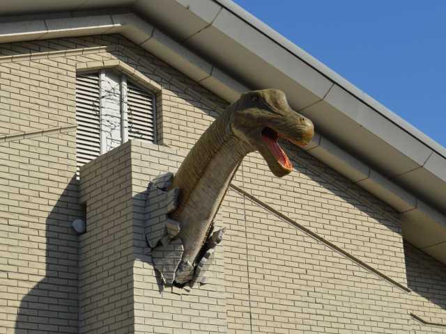 丹波竜化石工房「ちーたんの館」