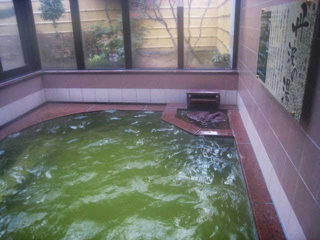 丹波市立薬草薬樹公園 丹波の湯