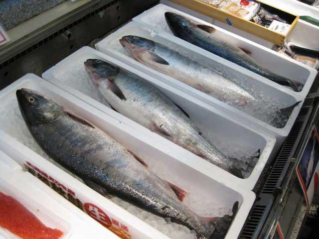 札幌市場外市場