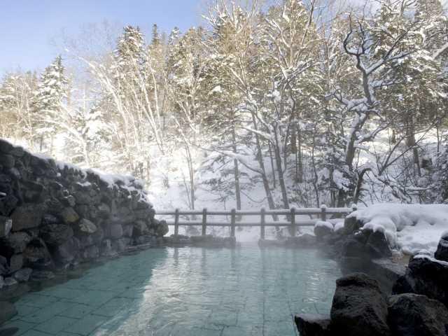 国民宿舎東大雪荘(日帰り入浴)