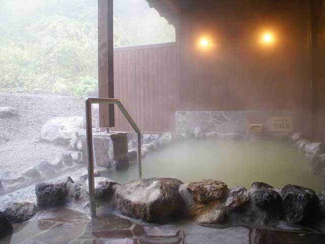 湯元 湧駒荘(日帰り入浴)