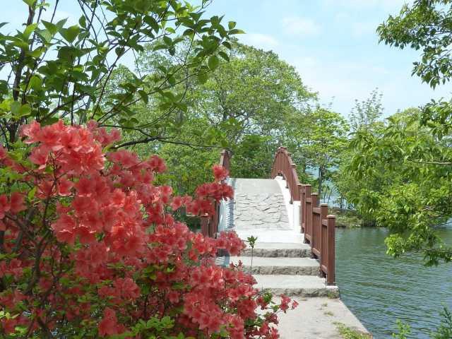 大沼湖畔遊歩道(島巡りの路)