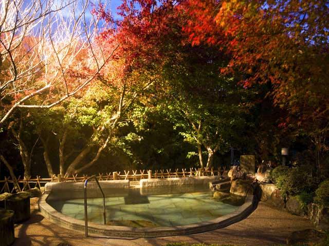 秘湯の宿滝見苑