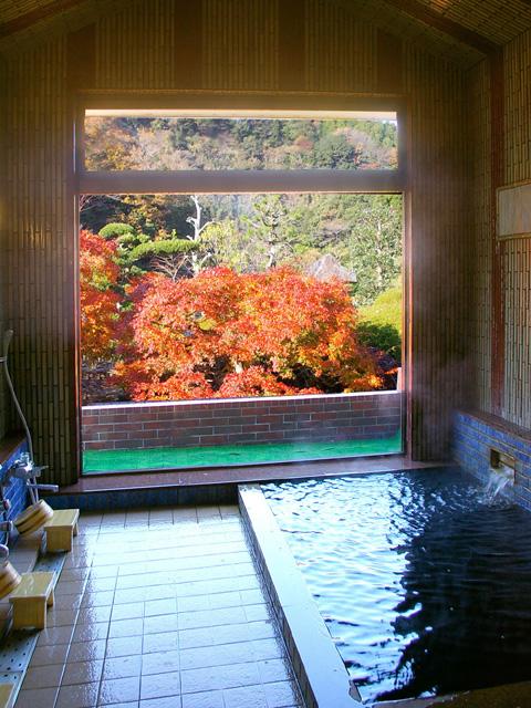 黒湯の宿 喜代元(日帰り入浴)