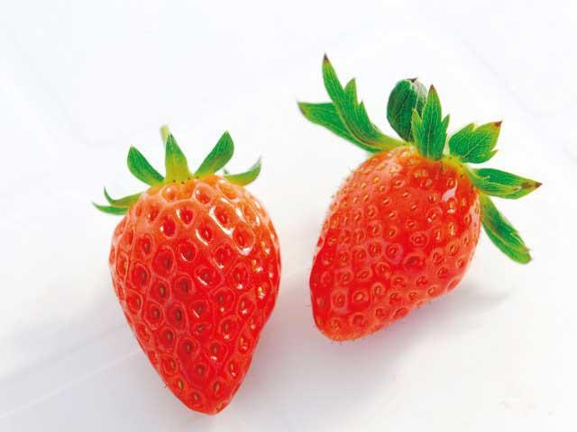苺の里 毛呂山バリアフリー観光いちご園 西戸店