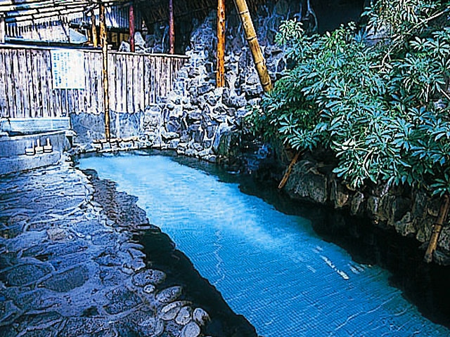 天龍荘(日帰り入浴)