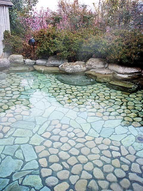 名苑と名水の宿 梅園(日帰り入浴)