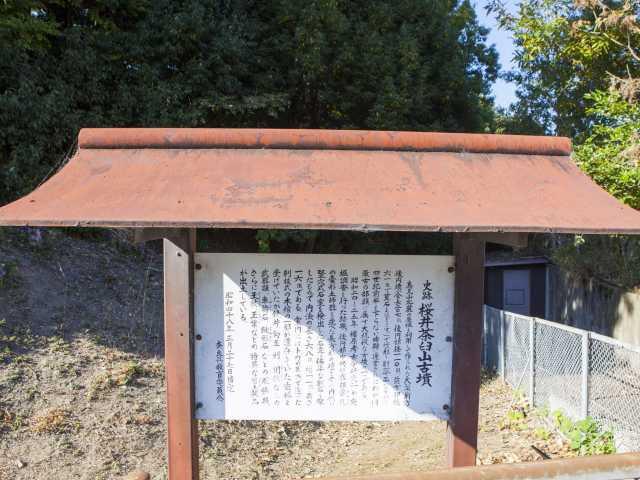 桜井茶臼山古墳