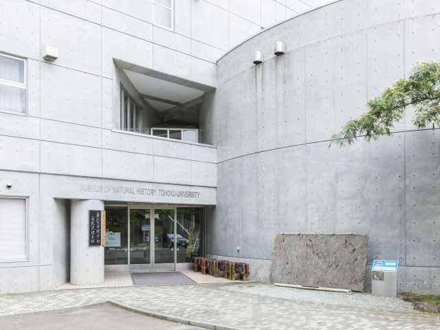 東北大学理学部自然史標本館