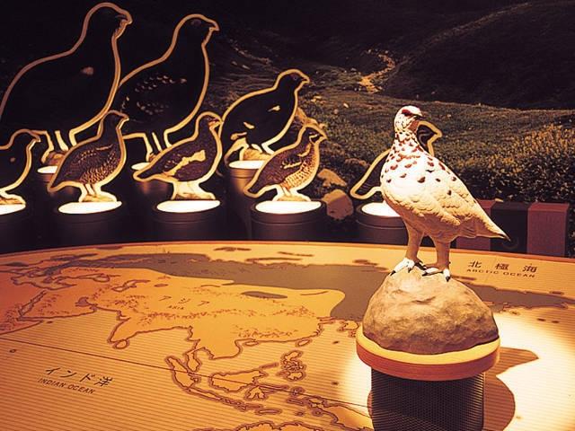 富山県立山センター立山自然保護センター