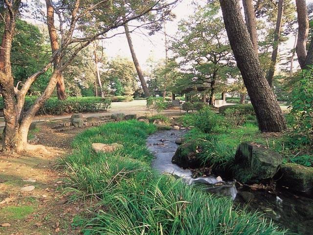 万力公園 万葉の森