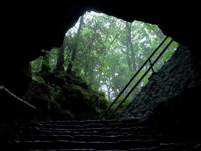 森の駅 風穴