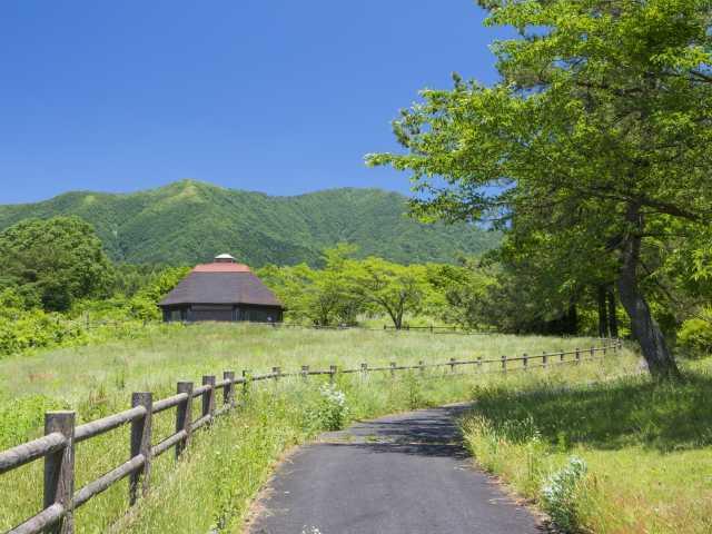 自然牧場公園