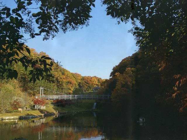 早島町ふれあいの森公園(キャンプ場)