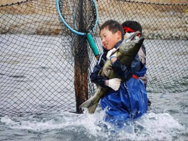 宮古鮭まつり