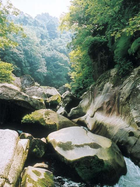 国の名勝天然記念物 県立自然公園 鬼の舌震
