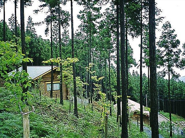 秦皇山森林公園