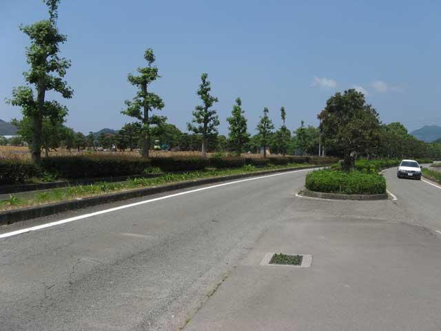 南レク街路(主要地方道 宇和島下波津島線)