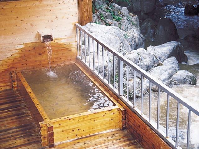 鈍川温泉ホテル(日帰り入浴)