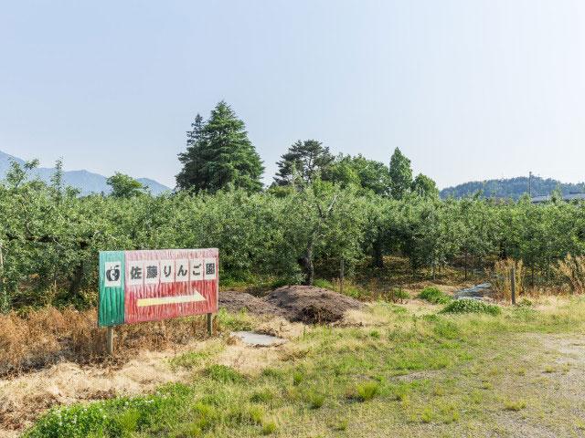 佐藤りんご園