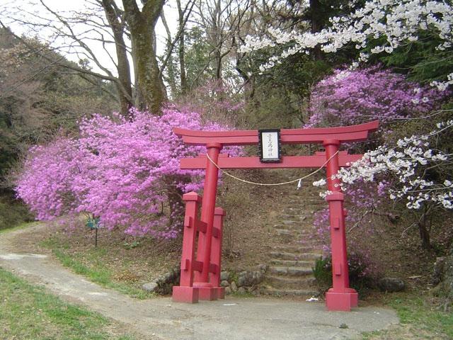 網代弁天山公園