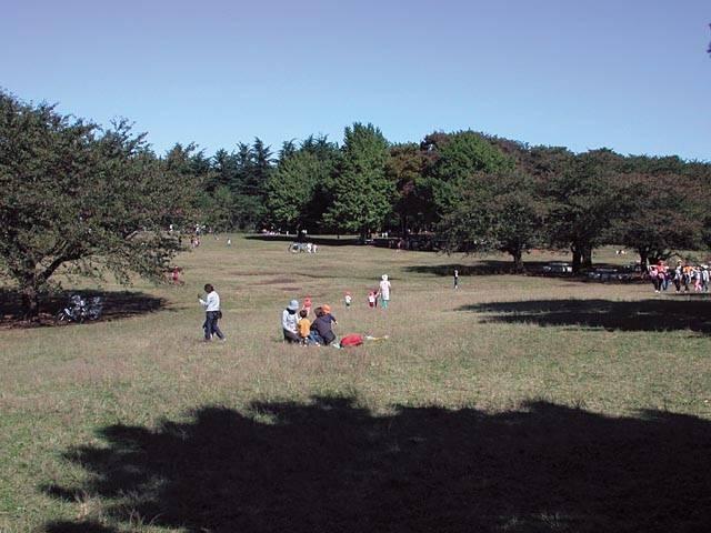 光が丘公園
