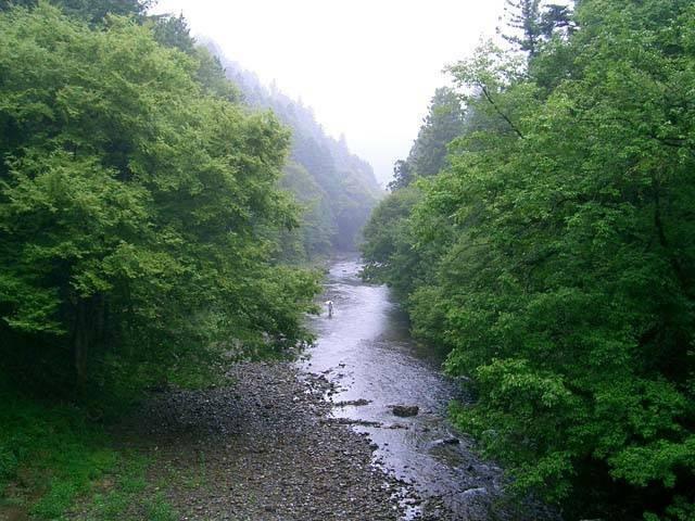秋川渓谷 瀬音の湯(日帰り入浴)