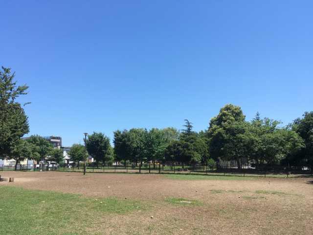 篠崎公園ドッグラン
