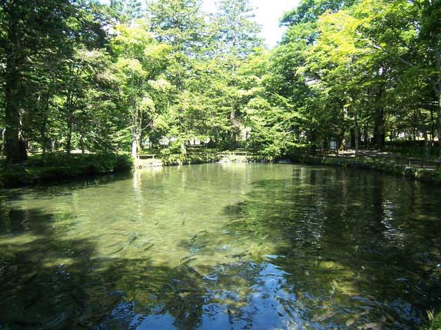 水産研究・教育機構 さかなと森の観察園