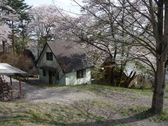 大平崎キャンプ場