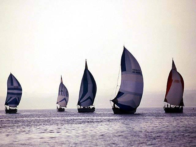 宜野湾~久米島ヨットレース