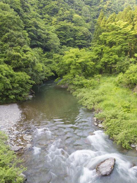 丹生川渓谷