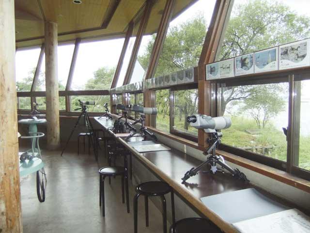 高島市新旭水鳥観察センター