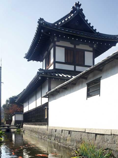 寺前・鯉通り
