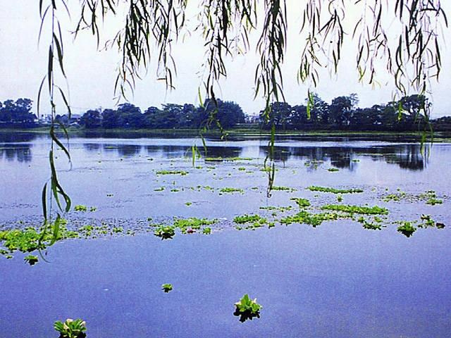 水前寺江津湖公園
