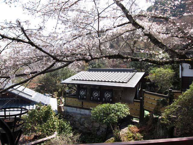 桃李温泉 季の杜 石庭(日帰り入浴)
