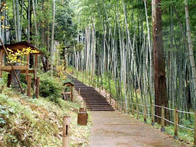 和みの丘公園