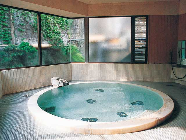 箱根大平台温泉組合 姫之湯