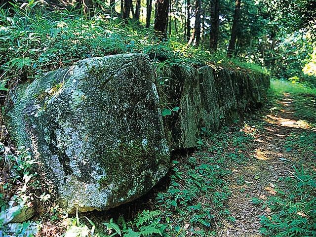 鹿毛馬神籠石