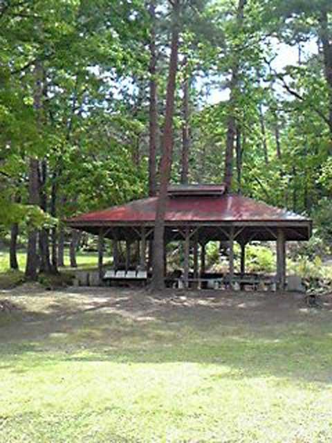 柳津森林公園