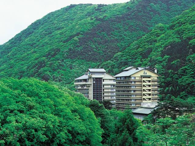 ホテル華の湯(日帰り入浴)