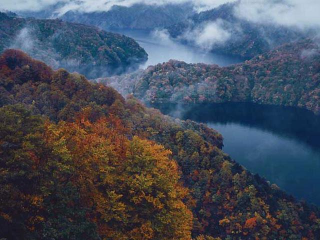 田子倉湖の紅葉