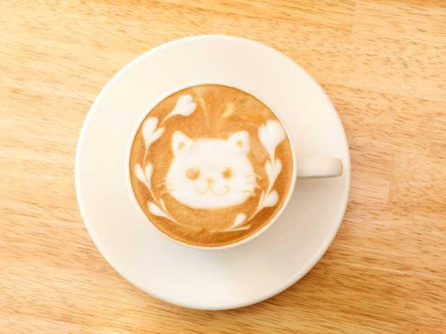 カフェ シュクルーム